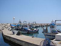 duquesa marina fishing